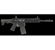CM16 Raider L 2.0E
